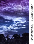 night landscape of blue sky...   Shutterstock . vector #1283902054