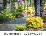 pressure washing garden path...   Shutterstock . vector #1283941294