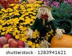 Fall Garden Display  Apples In...