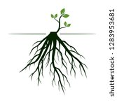 tree roots and germinate limb.... | Shutterstock .eps vector #1283953681