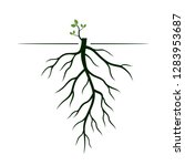 tree roots and germinate limb.... | Shutterstock .eps vector #1283953687