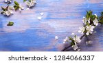 spring flowers on the blue...   Shutterstock . vector #1284066337