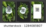 Stock vector vector banners set with green tropical leaves on black background exotic botanical design for 1284085807