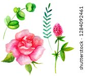 set of watercolor flowers and... | Shutterstock . vector #1284092461