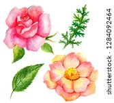 set of watercolor flowers and... | Shutterstock . vector #1284092464