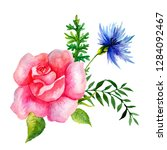 set of watercolor flowers and... | Shutterstock . vector #1284092467