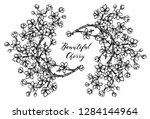 vector illustration  beautiful... | Shutterstock .eps vector #1284144964