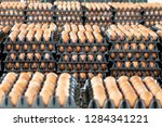 egg panels arranged on a... | Shutterstock . vector #1284341221