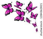 beautiful pink butterflies ... | Shutterstock .eps vector #1284362821