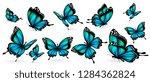 beautiful blue butterflies ... | Shutterstock .eps vector #1284362824