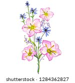beautiful wildflowers  bouquet  ... | Shutterstock .eps vector #1284362827