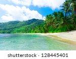 Shore Dream Palms