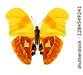 Stock photo  butterfly with yellow and orange wings isolated on white background 1284549241