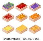 set of isometric box with... | Shutterstock .eps vector #1284573151