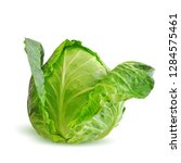cabbage low poly. fresh ... | Shutterstock .eps vector #1284575461