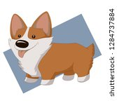 dog breed corgi on a blue...   Shutterstock . vector #1284737884