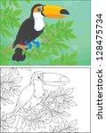 toucan | Shutterstock .eps vector #128475734
