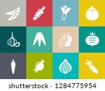 vegetables icons in set... | Shutterstock .eps vector #1284775954