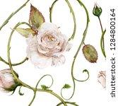 seamless watercolor pattern....   Shutterstock . vector #1284800164