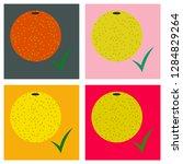 set of flat orange whole ....   Shutterstock .eps vector #1284829264