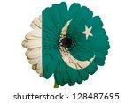 gerbera daisy flower in colors...   Shutterstock . vector #128487695