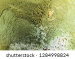 lemon with moldy peel. | Shutterstock . vector #1284998824