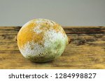 lemon with moldy peel. | Shutterstock . vector #1284998827