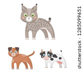 toy animals cartoon icons in... | Shutterstock . vector #1285099651