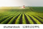 tractor spraying pesticides at  ...   Shutterstock . vector #1285131991