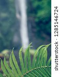 sekumpul waterfall in the green ... | Shutterstock . vector #1285146724