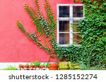 picture of an ivy covered house ... | Shutterstock . vector #1285152274