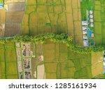 pictures of rice fields in ubud ... | Shutterstock . vector #1285161934