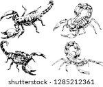 vector drawings sketches... | Shutterstock .eps vector #1285212361