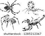 vector drawings sketches... | Shutterstock .eps vector #1285212367