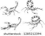 vector drawings sketches... | Shutterstock .eps vector #1285212394