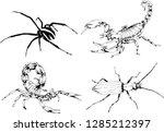 vector drawings sketches... | Shutterstock .eps vector #1285212397