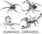 vector drawings sketches... | Shutterstock .eps vector #1285212421