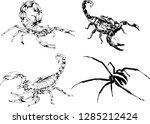 vector drawings sketches... | Shutterstock .eps vector #1285212424