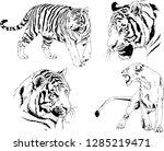 vector drawings sketches... | Shutterstock .eps vector #1285219471