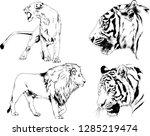 vector drawings sketches... | Shutterstock .eps vector #1285219474