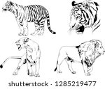 vector drawings sketches... | Shutterstock .eps vector #1285219477