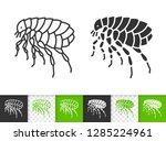 flea black linear and...   Shutterstock .eps vector #1285224961
