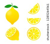 lemon. yellow lemon vector... | Shutterstock .eps vector #1285264561