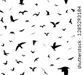 flying birds silhouettes on... | Shutterstock .eps vector #1285293184