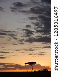 sundown at masai mara  kenya   Shutterstock . vector #1285316497