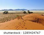 dunes with acacia trees in the... | Shutterstock . vector #1285424767