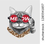 cute cat wearing meow... | Shutterstock .eps vector #1285541857