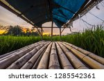 huts in the rice fields where... | Shutterstock . vector #1285542361