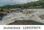 Nile River In Murchison Falls...