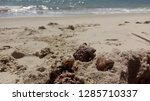 natural  beautiful  earth    Shutterstock . vector #1285710337